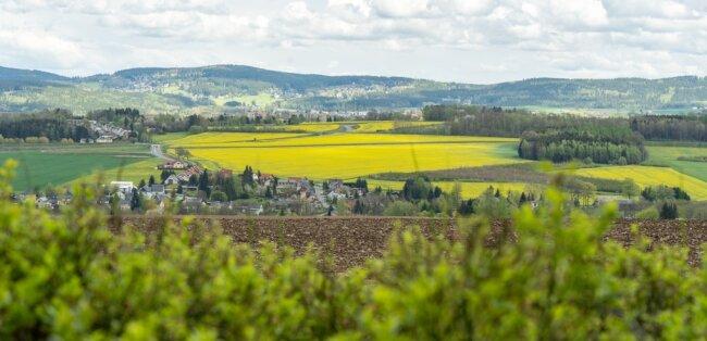 Tolle Aussicht: Vorne liegt Reumtengrün, dahinter die als Kuhschnappel bezeichnete Richardshöhe, dahinter Auerbach mit Vogelsgrün und Schnarrtanne.