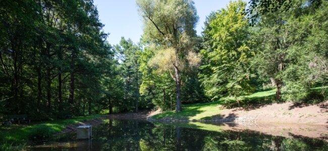 Der Teich im Hermann-Ende-Park in Hohenstein-Ernstthal wurde in den vergangenen Monaten saniert.