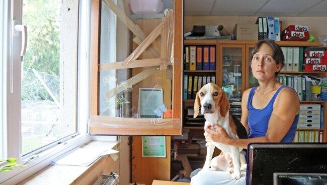 Tierheim-Chefin Claudia Ruf und Beagle Charlie vor dem kaputten Bürofenster: Dort sind die Einbrecher nachts eingestiegen.