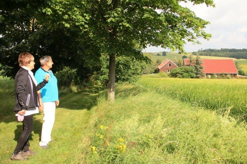 Blick Richtung Mechelgrüner Lochmühle: Für Roswitha Ulbricht und Helmut Zengerling ist die inzwischen 30 Jahre alte Allee ein Kleinod, das sie nun auch anderen Menschen mit einem Rundwanderweg zugänglich machen möchten.