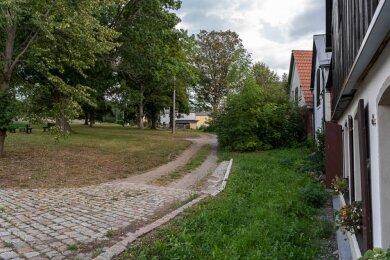 Verbindet Dorfgeschichte mit der Lebensqualität von heute - der Rotschauer Lindenplatz.