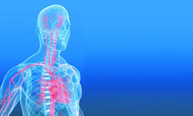 Diagnose koronare Herzkrankheit