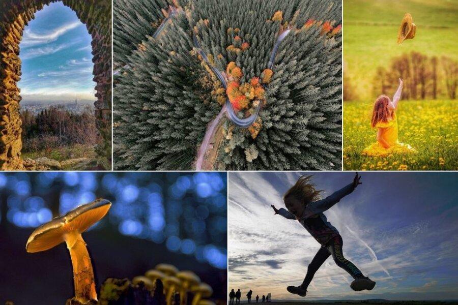 Das sind die Siegerbilder des Fotowettbewerbs 2020.