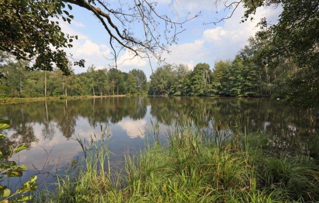 Am kleinen Pohlteich, einem Nebengewässer des Kirchberger Pohlteichs, haben Anwohnern zufolge Polizei und Feuerwehr das Ufer abgesucht. Ohne Erfolg.