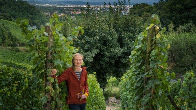 Antje Härtel (49) hat ihr Paradies in Radebeul gefunden. Sie wurde in Leipzig geboren, studierte in Dresden Pflanzenchemie und arbeitete bei Robotron Bürochemie. 14 Jahre lang hat sie sich voll ihren vier Töchtern gewidmet - und ist danach als Winzerin durchgestartet.