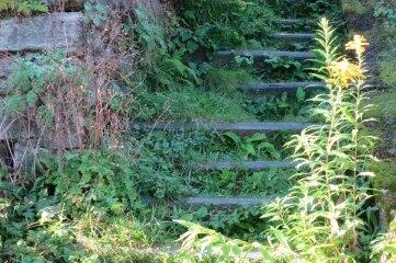 Hier noch Stufen zu finden, ist äußerst schwierig.