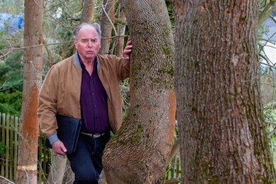Mehrere Bäume in der Plauener Kleingartenanlage Fickertsberg wurden regelrecht geschält. Vereinsvorsitzender Dietmar Uhlig vermutet, dass hier mit elektrischen Geräten vorgegangen wurde.