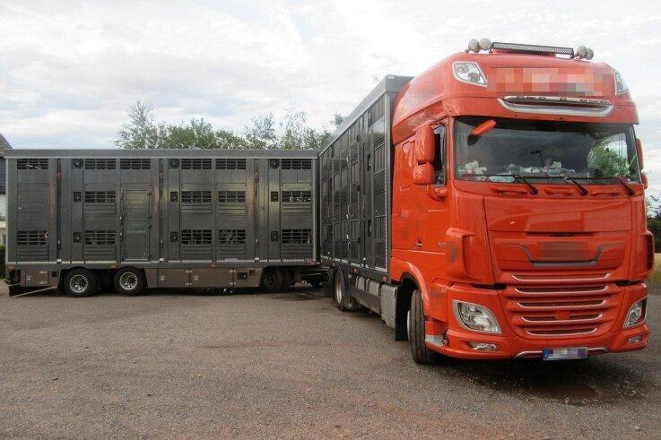 Diesen Tiertransporter stoppte die Polizei am Montagabend in Mittweida.