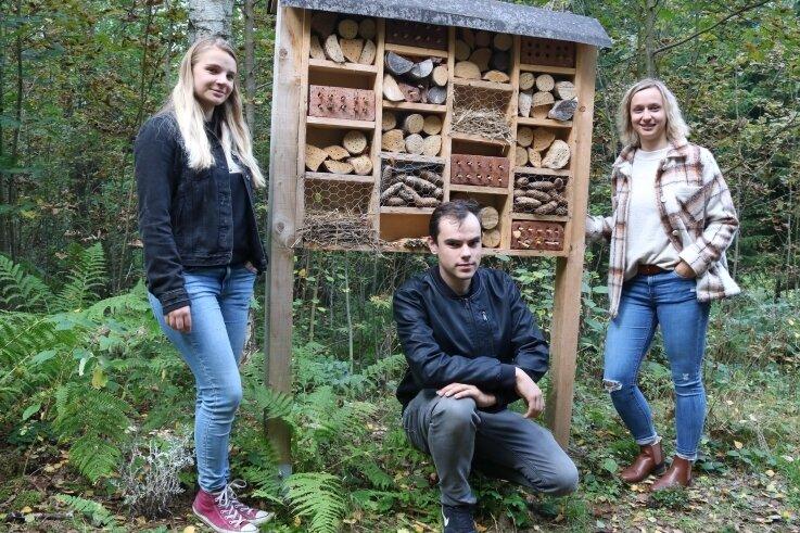 Annie Kraus, Franz Nestler und Lisa Riedel (von links) haben zusammen mit noch einigen anderen Jugendlichen Insektenhotels für den Roßbachweg in Markersbach gebaut.