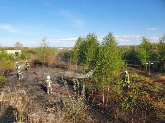 Die Feuerwehr hat am späten Sonntsgnachmittag einen Ödlandbrand auf dem Gelände der JVA-Baustelle im Zwickauer Stadtteil Marienthal gelöscht.