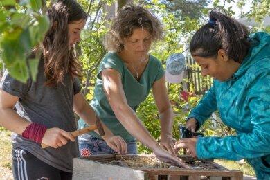 """Hämmern, bauen und basteln für die """"Bunten Beete"""": Mirjam, Michaela Wiesehütter und Maria (von links) beim Bau des Insektenhotels."""