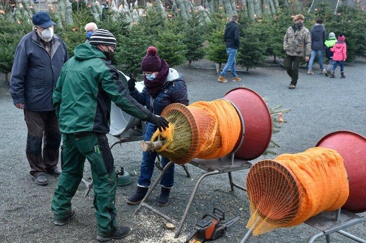 Der Verkauf von Weihnachtsbäumen geht in Wohlhausen weiter.