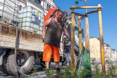 Daniel Knipper befüllt einen Wassersack an einem der in der Kaiserstraße neu gepflanzten Säulenahorn-Bäume. Die 60 Liter Wasser, die der Sack fasst, werden über sechs bis acht Stunden ans Wurzelwerk der jungen Bäume abgegeben. Die haben so mehr Zeit, das Wasser aufzunehmen.