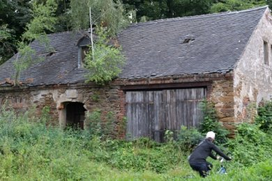 Die Natur hat sich dieses Grundstück samt Gebäude an der Kirchgasse 32 in Brand-Erbisdorf zurückerobert.