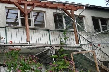 Die Terrassenüberdachung auf der Rückseite der Katzen-Quarantäne war kaputt.