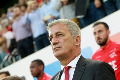Petkovic nimmt zehn Bundesligaspieler mit nach Russland