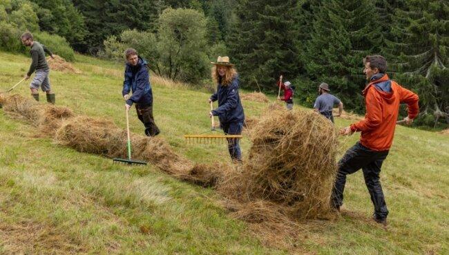 Zwei Wochen Heuernte an den Hängen des Fichtelbergs - das geht auf Arme und Beine.