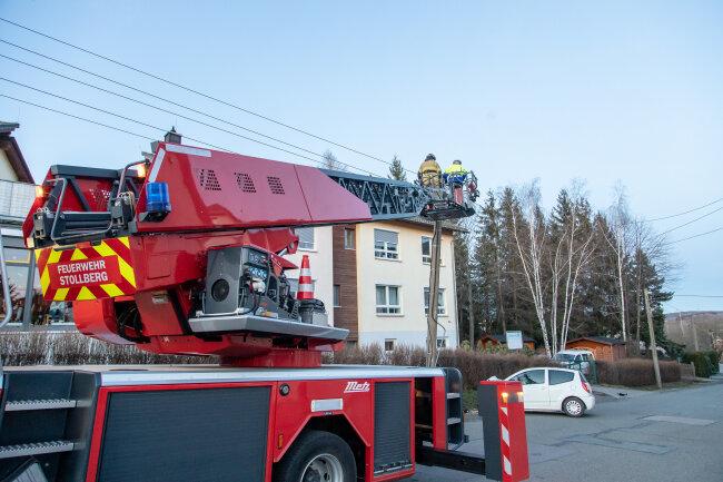 Die Feuerwehr Stollberg legte zusammen mit dem Energierversorger den Masten kontrolliert um.