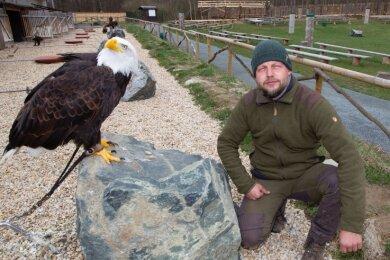 """Der majestätische Weißkopfseeadler Lakota wirkt tiefenentspannt, sein """"Chef"""", Falkner Hans-Peter Herrmann, kann indes auch als bekennender Optimist seine Besorgnis im zweiten Corona-Jahr nicht mehr verbergen."""