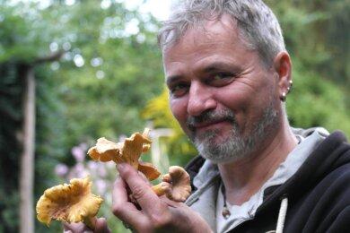 Pilzberater Michael Möbius zeigt Pfifferlinge, die zu den beliebtesten Pilzen zählen. Die Art ist angenehm festfleischig mit leicht pfeffrigem Geschmack, selten madig und sollte gut zerkleinert werden.