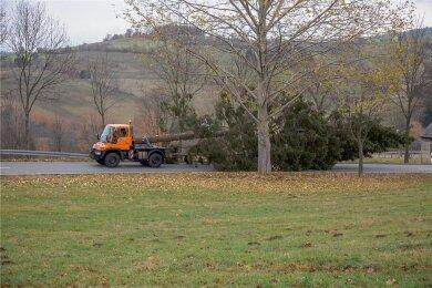 Es ist bald so weit: Der Annaberger Weihnachtsbaum kommt. In diesem Jahr ist der Weg aber nicht so weit. Das ausgesuchte Exemplar steht derzeit noch im Stadtteil Buchholz. Das Foto zeigt den Weihnachtsbaumtransport im vergangenen Jahr.
