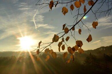 Das gab es in mehr als 20 Jahren Wetteraufzeichnung noch nicht: Sechs Monate mit über 200 Sonnenstunden - das registrierten die Stationen in Bad Brambach und Morgenröthe-Rautenkranz.