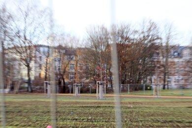 Gedenkbäume im Schwanenteichpark: Erster Schritt des Erinnerns oder schon der Schlusspunkt?