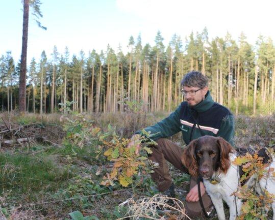 Revierleiter Eric Specht, hier mit Hund Aki, zeigt Eichen, die nach dem Sturm im Revier Mittelhöhe bei Pausa gepflanzt wurden.
