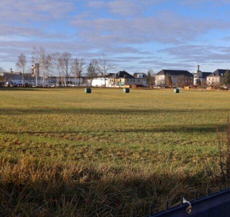 Diese Abrissfläche an der Schlachthofstraße in Glauchau wird frühestens ab Juli 2022 bebaut werden können.
