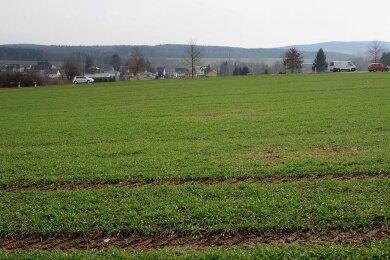 Die Fläche an der Perlaser Straße in Treuen, bisher landwirtschaftlich genutzt, soll Standort eines Einkaufszentrums werden. Investoren wollen dort Märkte von Rewe und Aldi sowie drei Fachmärkte bauen.