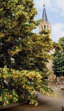 Die Aegidiuskirche in Lengenfeld ist ein Ziel der Entdeckertour zu Gotteshäusern der Region.