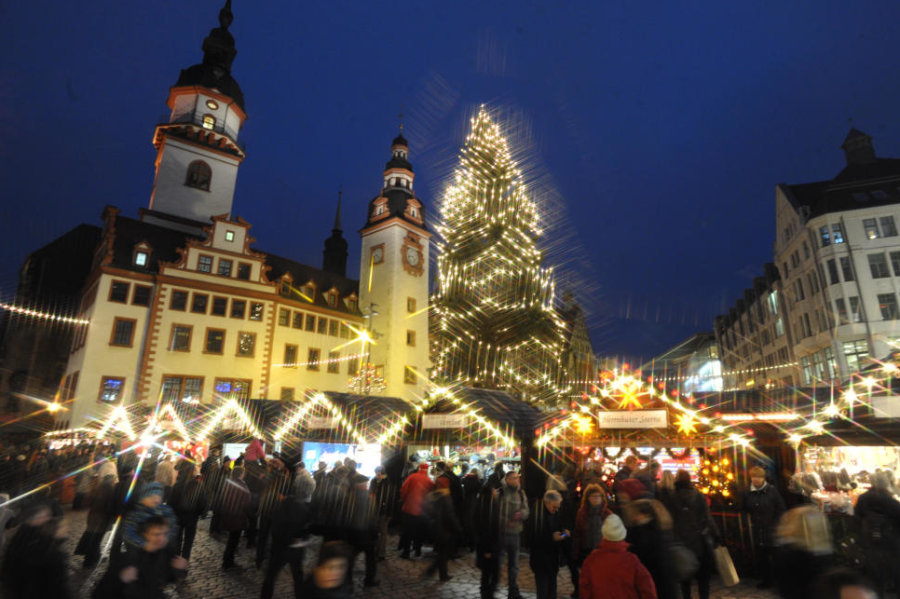Der neue Chemnitzer Weihnachtsbaum ist gefunden