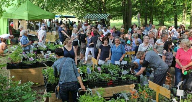 Tausende Besucher strömten zum Kräuter- und Pflanzenmarkt im Grünfelder Park.