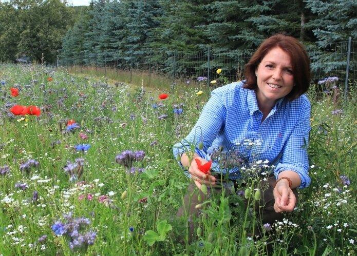 Kathleen Rotter hat gleich neben ihren Bienenstöcken eine Blühstreifen für die Insekten angelegt.