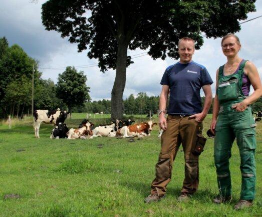 Die Geschäftsführer des Milchgutes Trieb, Nicole Andermann und Steffen Luderer, bei den Kälbern des Landwirtschaftsbetriebes.