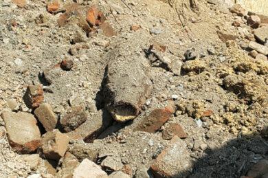 Vor einem guten Jahr wurde diese Fliegerbombe, die in Plauen gefunden wurde, gesprengt.
