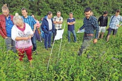 """Mitarbeiter Andreas Neubert (3. v. r.) erläutert den Teilnehmern des Feldtages das Prinzip der Blühflächennutzung der Agrargenossenschaft """"Bergland""""."""