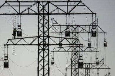 Der Energieversorger Mitnetz darf den Ausbau der Stromtrasse zwischen Falkenstein und Markneukirchen nicht umsetzen wie geplant.