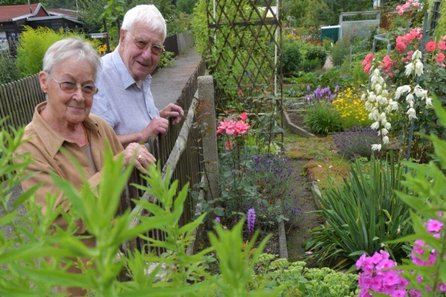 """In der Gartenanlage """"Waldfrieden"""" in Freiberg sind Christiane und Eberhard Löffler oft anzutreffen. """"Unser Garten bringt uns die nötige Ausarbeitung"""", meinen die beiden Ruheständler."""