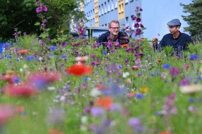 Stadtteilmanager Thomas Rosner (links) und Autor Norbert Engst auf der Blühwiese, an der am Mittwoch gefeiert wird.