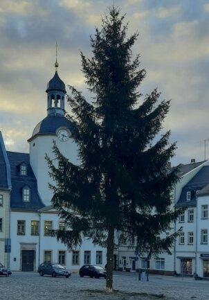So sieht er aus, der 17 Meter hohe Weihnachtsbaum auf dem Glauchauer Marktplatz.