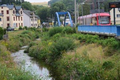In diesen Tagen sollen Vorarbeiten für den Bau neuer Ufermauern und die Aufweitung des Flussbetts der Würschnitz zwischen der Eisenbahnbrücke (im Bild) und dem Spinnereiweg in Harthau beginnen.