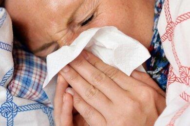 Grippe und Magendarm hatten Schulen und Hort in Elsterberg lahmgelegt.