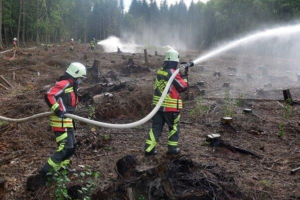 Die Rossauer Feuerwehrleute - hier bei einer Übung zum Löschen eines Waldbrandes - sollen höhere Entschädigungen erhalten.