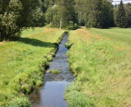 Die ersten Meter der Weißen Elster auf deutschem Gebiet - aufgenommen in der Nähe des Naturfreibades in Bad Elster.
