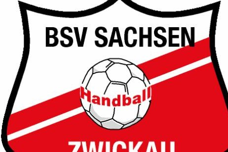 BSV Sachsen Zwickau kassiert Niederlage in Nürtingen