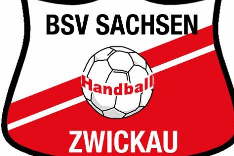 BSV Sachsen feiert Auswärtssieg bei den Handball-Luchsen