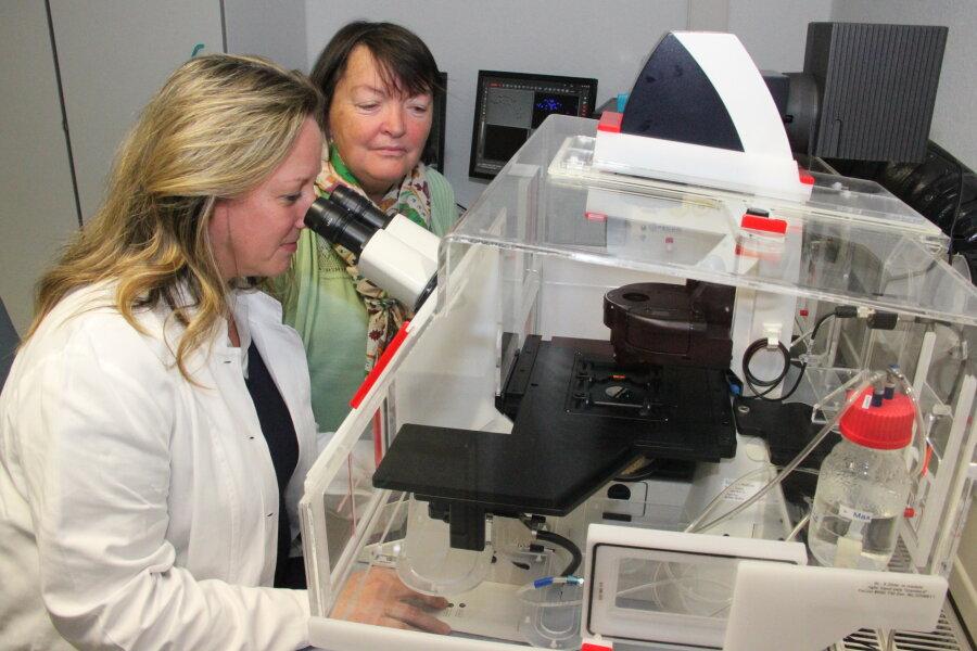 Sylvia Renz (l.) und Tamara Grummt untersuchen in Bad Elster die Auswirkungen von Mikroplastik am Lebendzellenmikroskop.