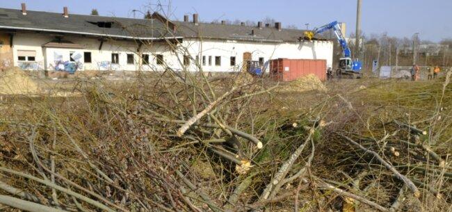 Das ehemalige Güterbahnhofsgelände wird für die Baupläne von den alten Güterschuppen befreit.