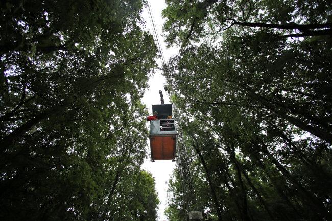 Von einem Kran aus erforschen Wissenschaftler seit 17 Jahren den Leipziger Auwald.